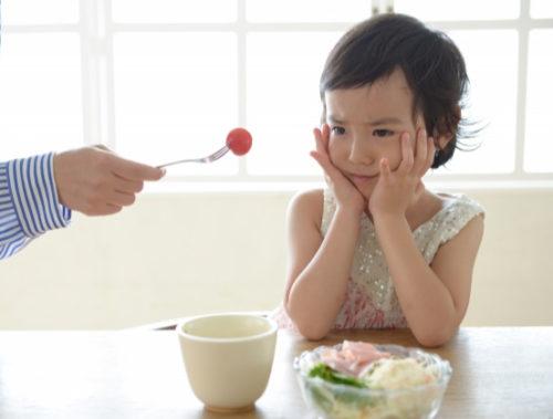 なぜ食べ物の好き嫌いは起こるのか?