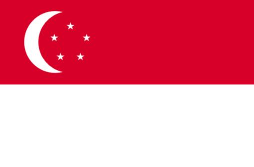 シンガポールの教育制度と特徴を詳しく解説!PISA世界2位の秘訣